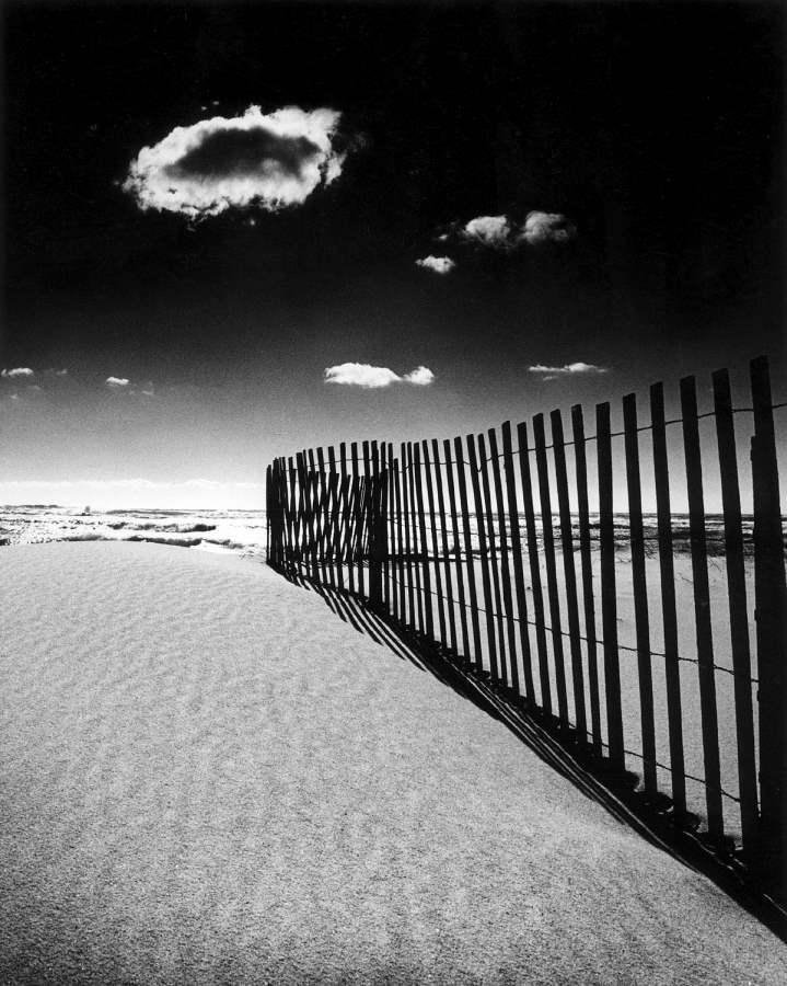 South Beach II 1990 B2 by  Alison Shaw - Masterpiece Online