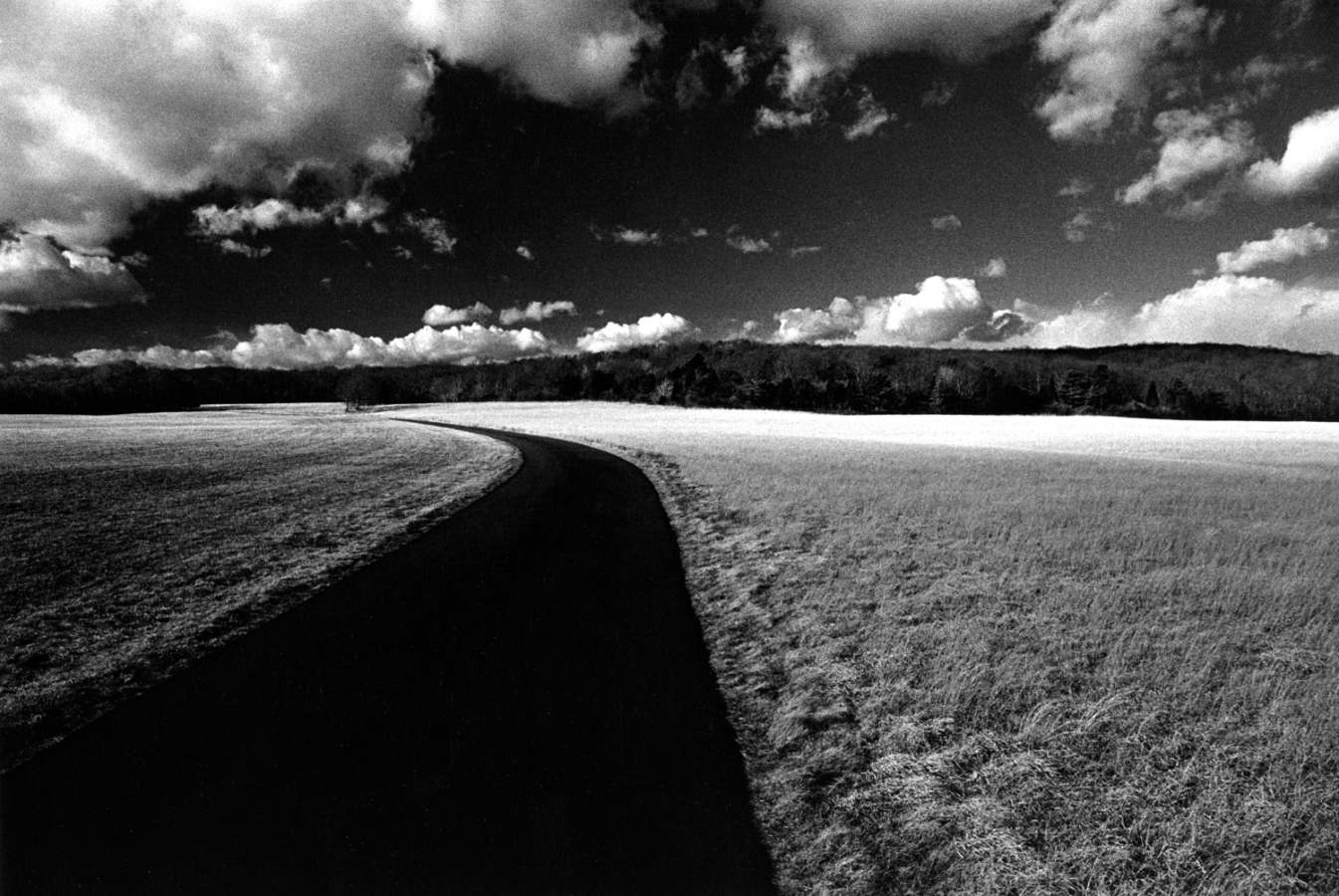 Seven Gates Farm 1980... by  Alison Shaw - Masterpiece Online