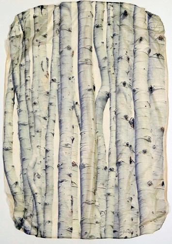 Aspen Thicket by  Pete Zaluzec - Masterpiece Online