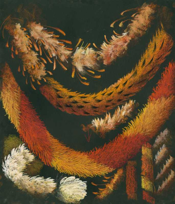 Feather Sketch 1 by  Shelley S. M. Miller - Masterpiece Online