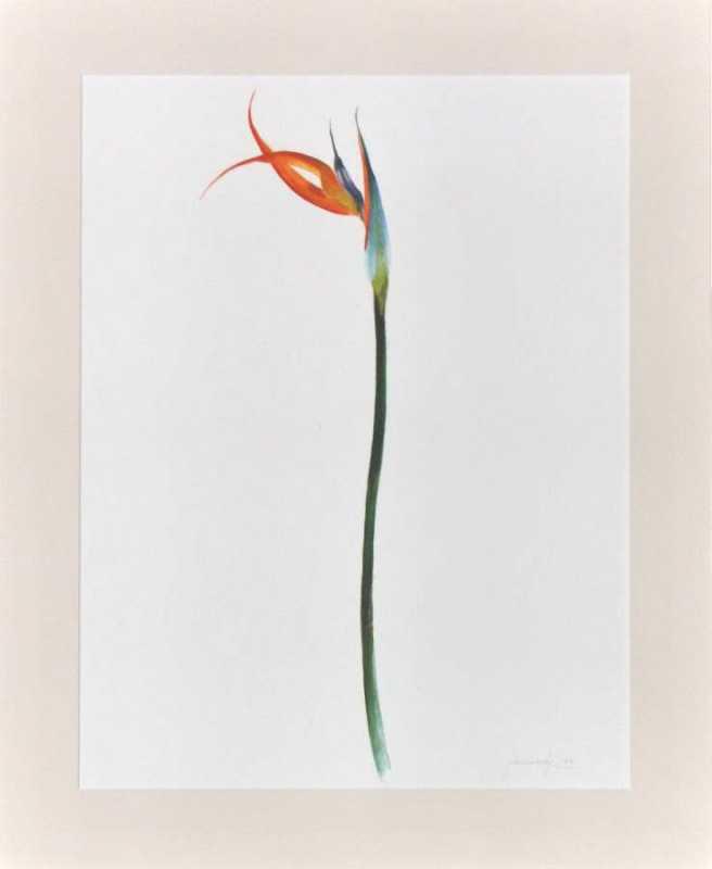 Bird II by  John Wisnosky - Masterpiece Online