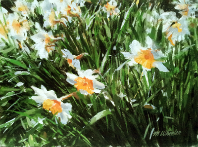 Daffodil Bed (Study) by  Michael Wheeler - Masterpiece Online