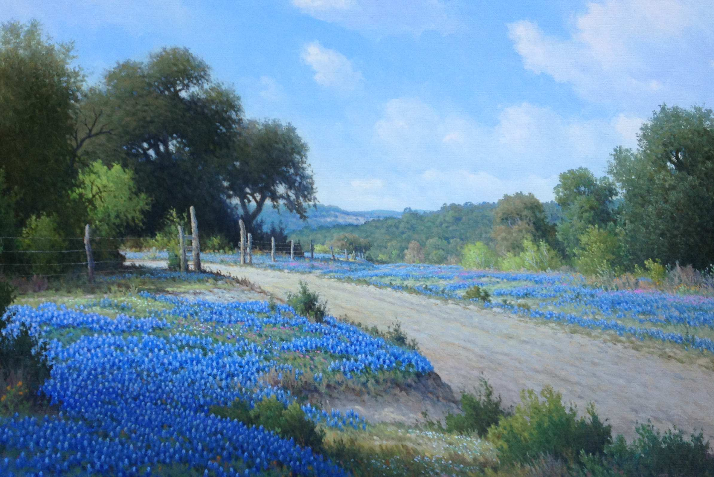 Hill Country Lane by Mr Jerry Ruthven - Masterpiece Online
