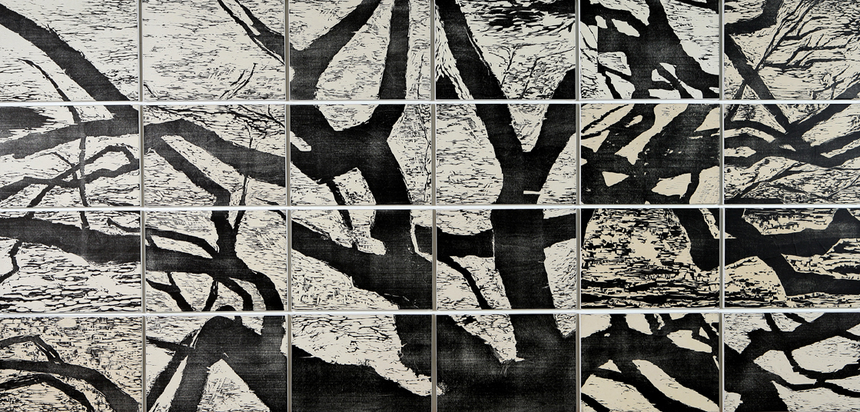 Wild Olive (APs) by  Angela Hayson - Masterpiece Online