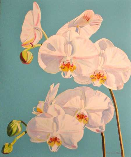 Groupings of 4 Phalae... by  Fabienne Blanc - Masterpiece Online