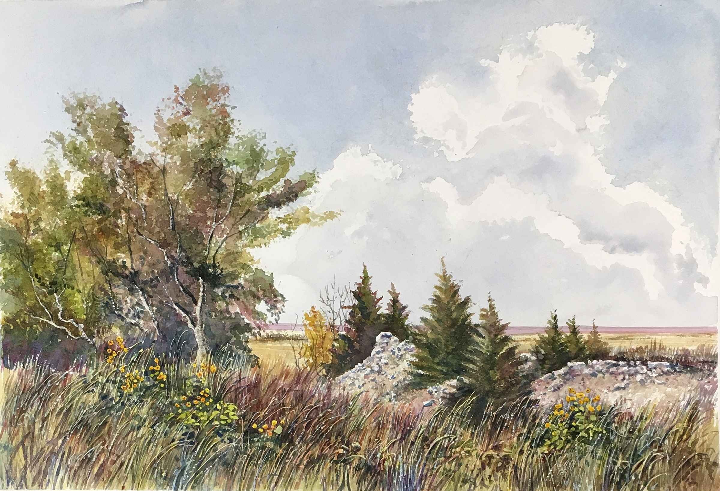 Outcrop At the Top by  Ralph Fontenot - Masterpiece Online