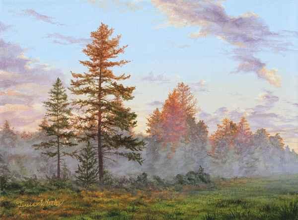 Summer Sunrise - Mist...  by   Teresa  Wheeler
