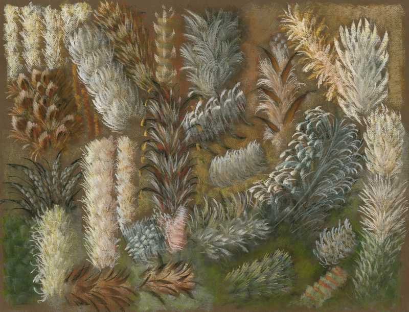Feather Sketch 7 by  Shelley S. M. Miller - Masterpiece Online