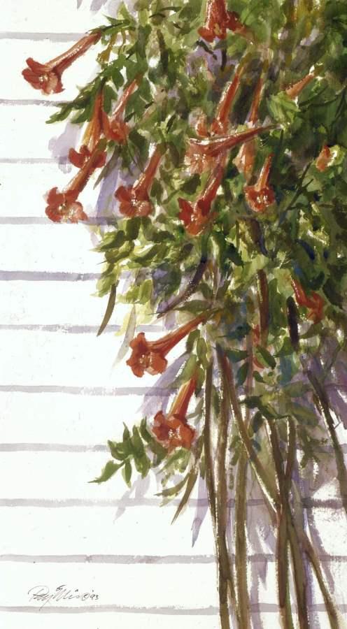 Trumpet Vine by  Ray Ellis - Masterpiece Online