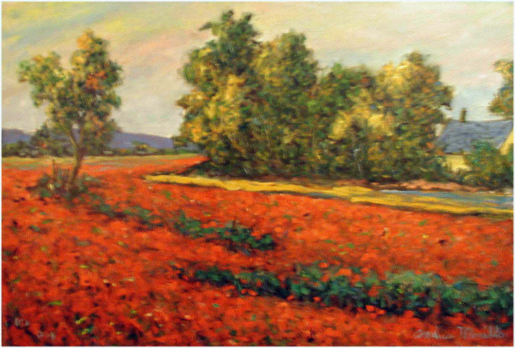 Poppyfield by  Andres  Morillo - Masterpiece Online
