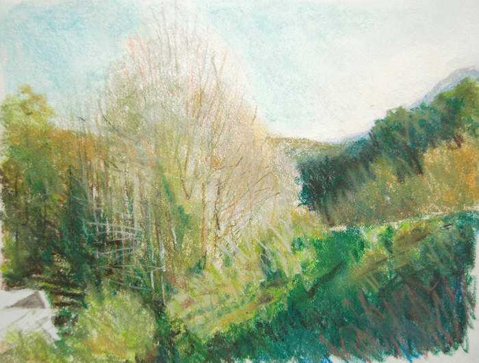Valley Trees - La Spe... by Mr Mark Stewart - Masterpiece Online