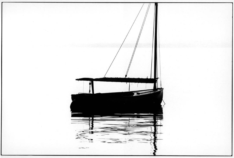 Vineyard Haven Harbor... by  Alison Shaw - Masterpiece Online