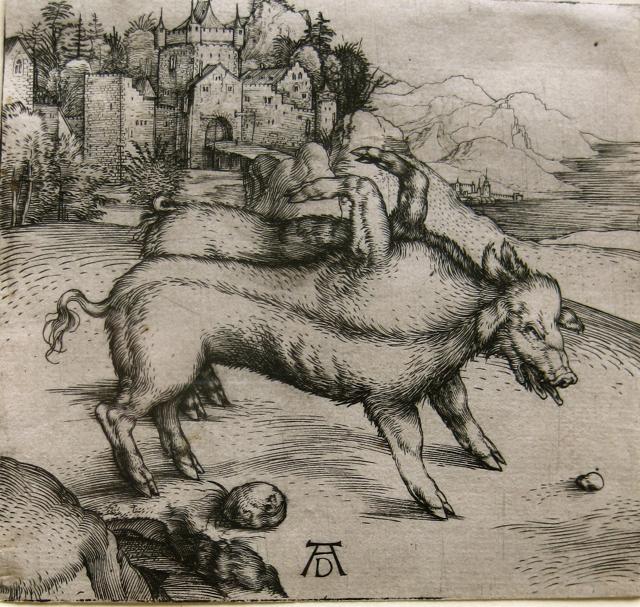 The Monstrous Pig of ... by  Albrecht Durer (1471-1528) - Masterpiece Online