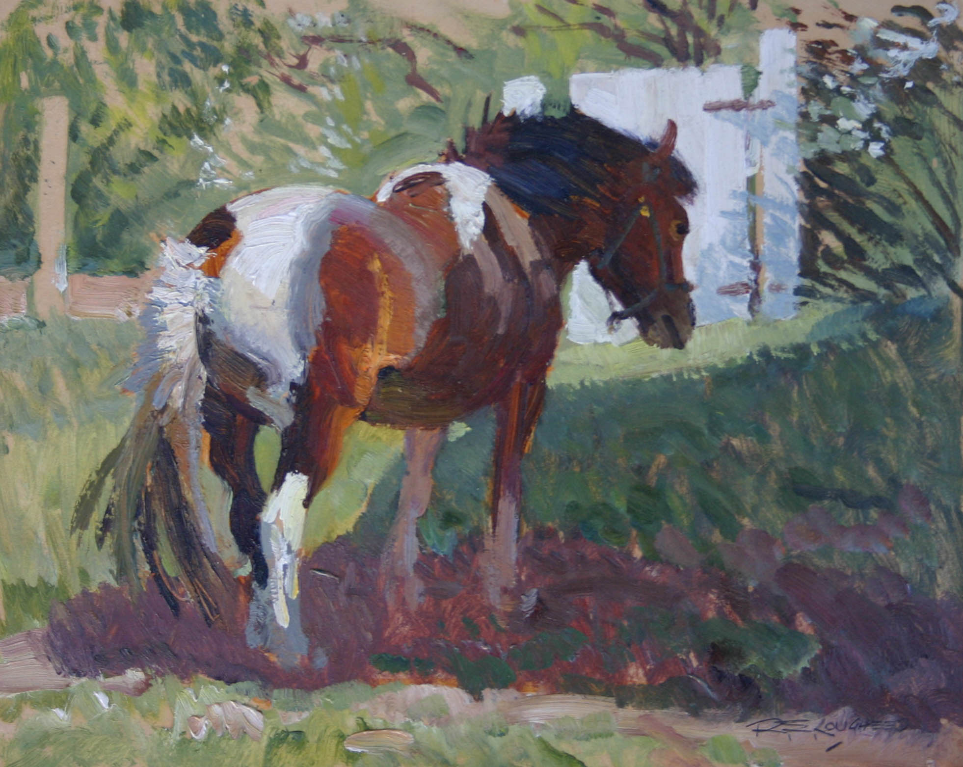 Tony the Shetland Pony by  Robert Lougheed - Masterpiece Online