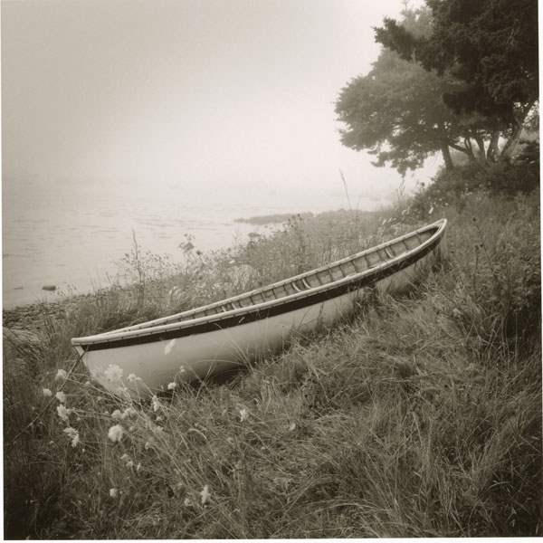 Above the Tide by  Michael Kahn - Masterpiece Online