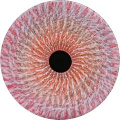 Vorticity Bloom #26 (... by  warm  - Masterpiece Online