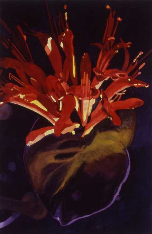 Firecracker Flower 20... by  Sheila Kriemelman - Masterpiece Online