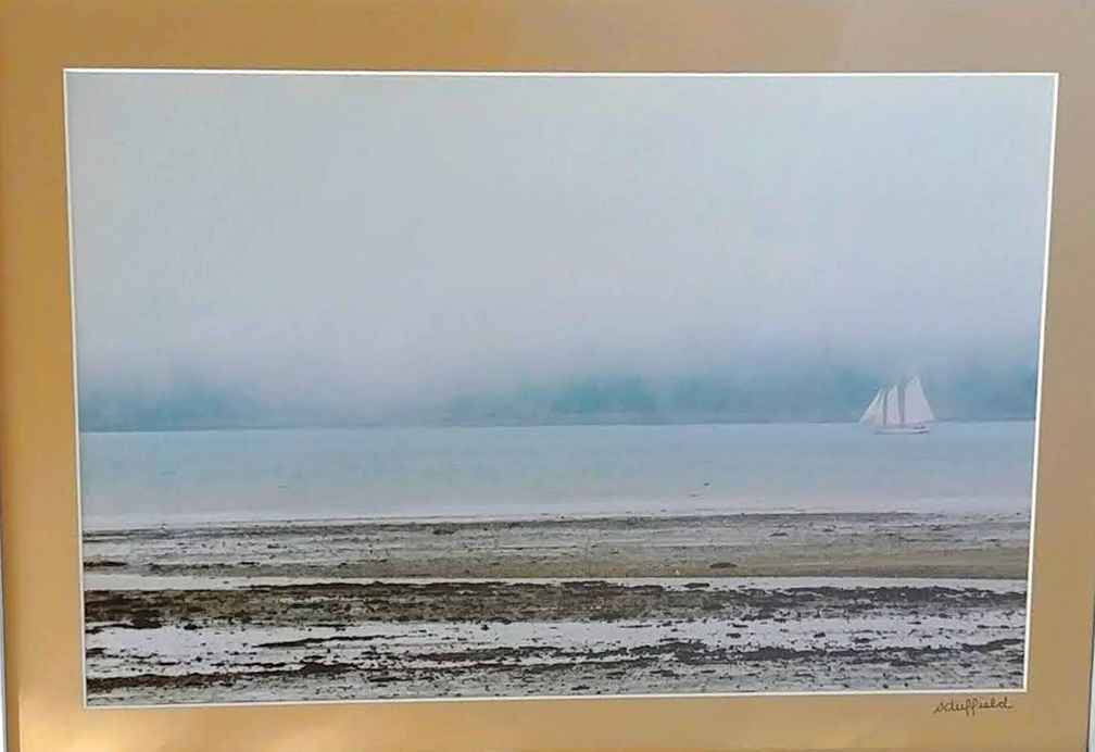 Sailing Solo in Fog  by  Sharon Duffield