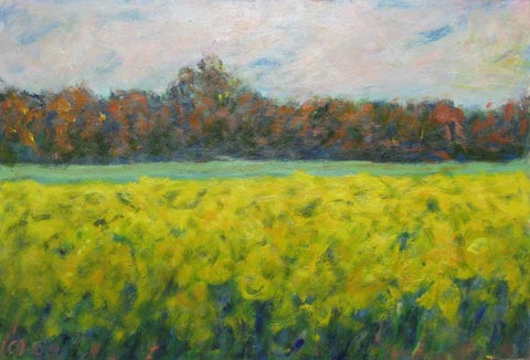 Field with Pink Sky by  Andres  Morillo - Masterpiece Online