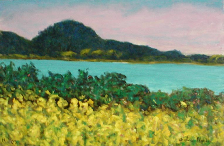 Point Lobos by  Andres  Morillo - Masterpiece Online