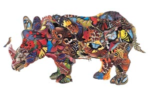 Rhino  by  Stephen Parlato