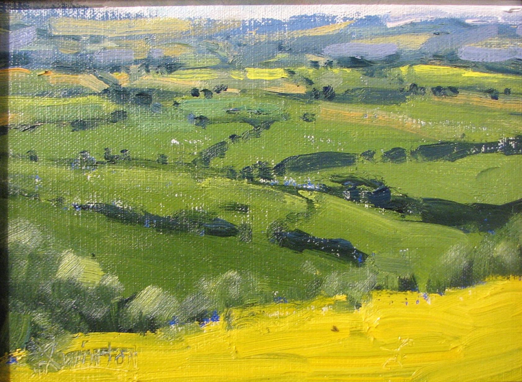 Canola Field by Mr Doug Swinton - Masterpiece Online