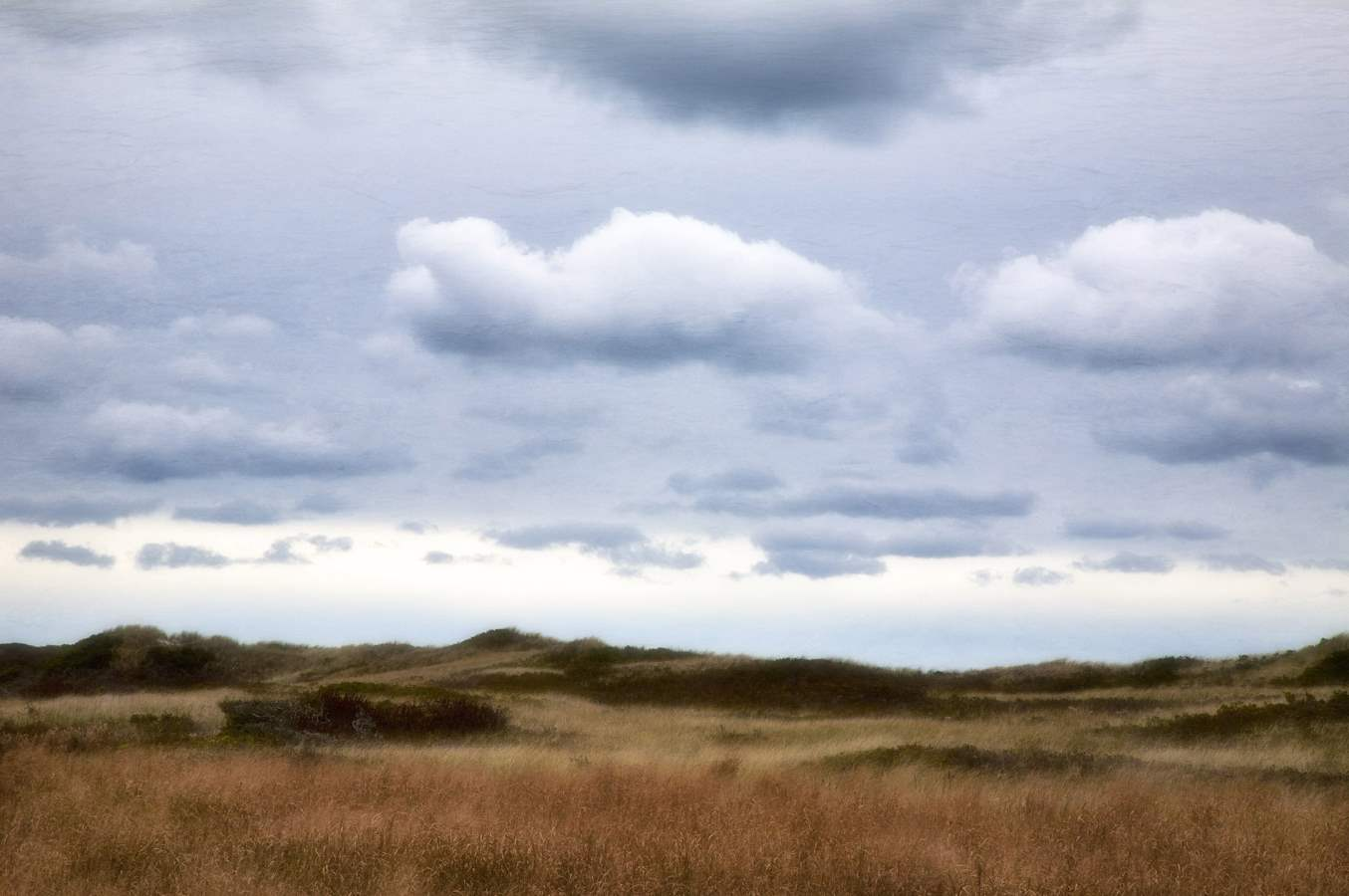 September Dunes, Aqui... by  Michael Stimola - Masterpiece Online