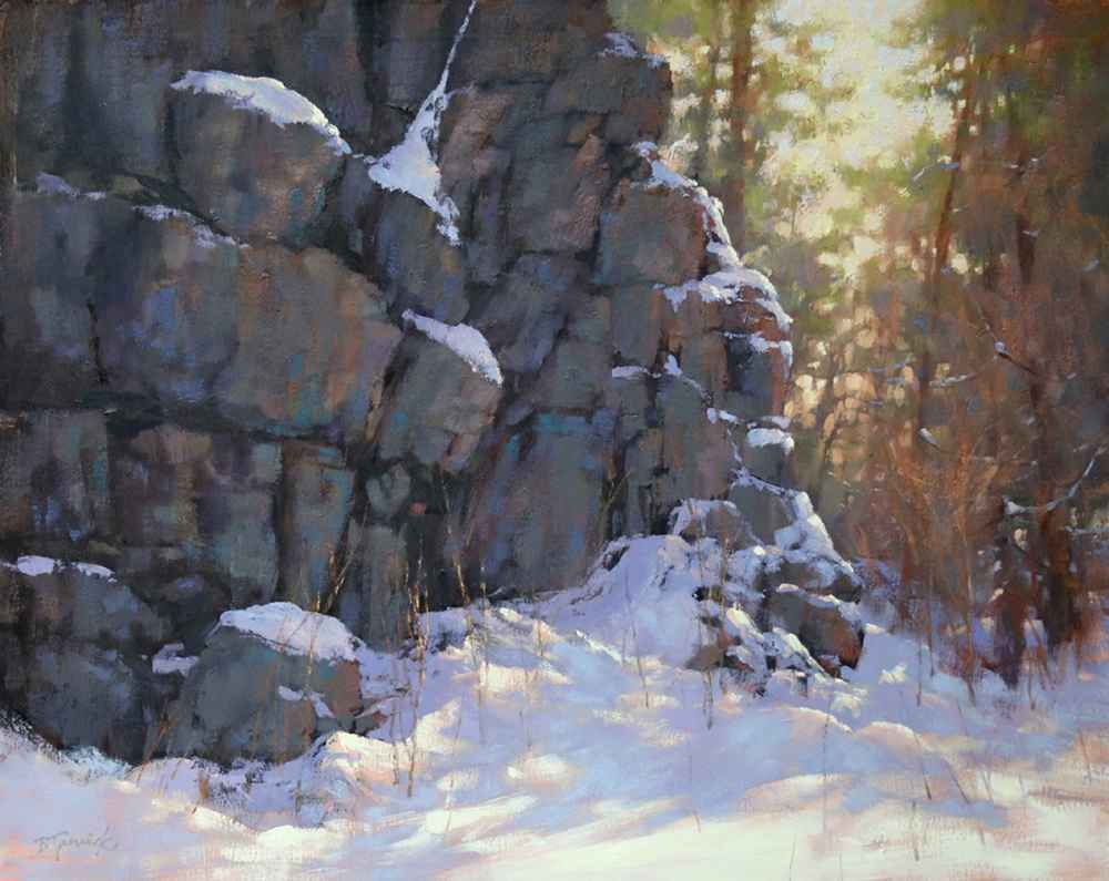 Frosted Rock Wall  by  Barbara Jaenicke