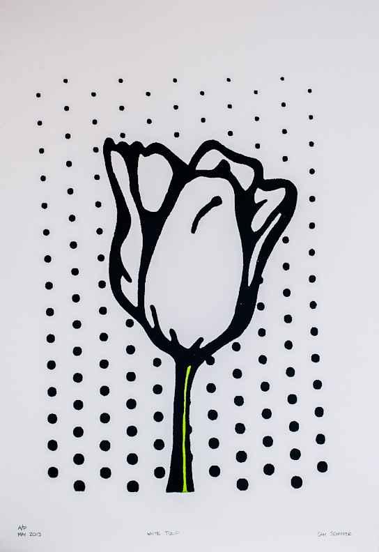 White Tulip on White ...