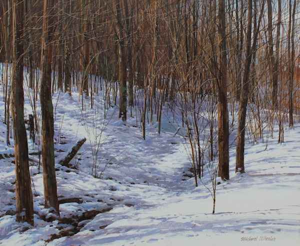 Fluffy Snow - South V...  by  Michael Wheeler