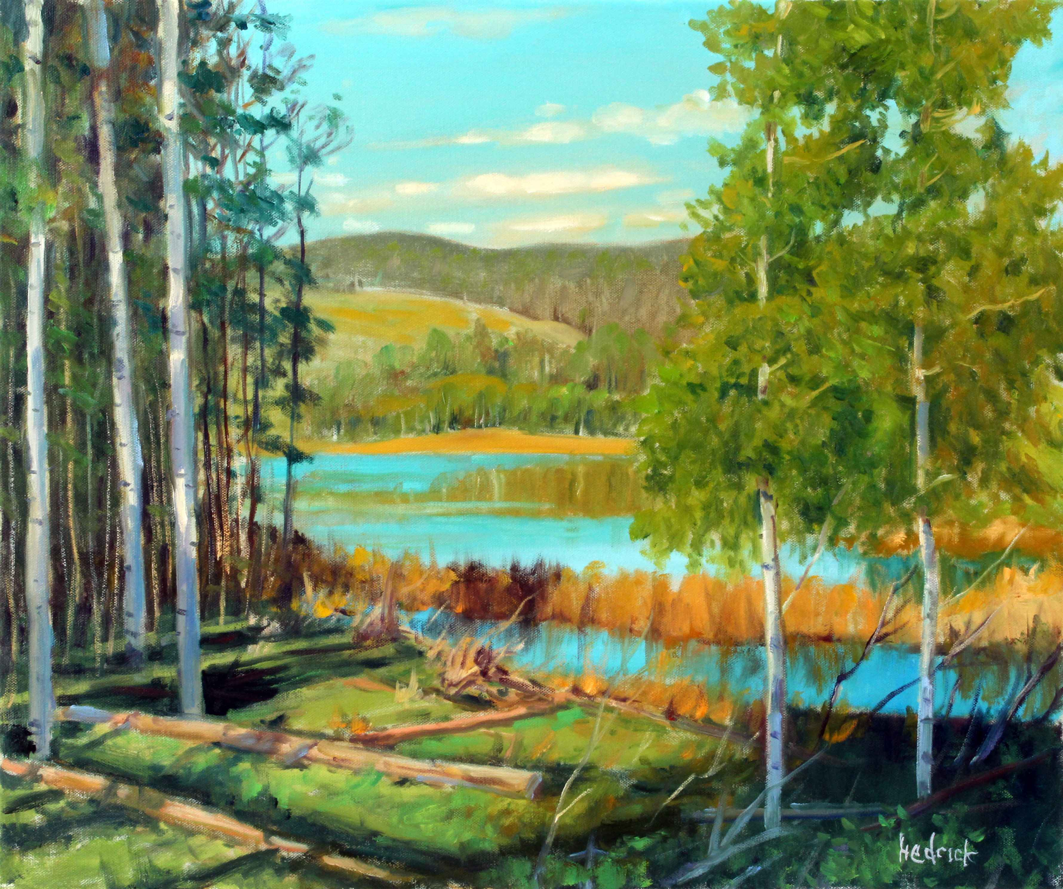 Aspen Grove Viewpoint  by  Ron Hedrick