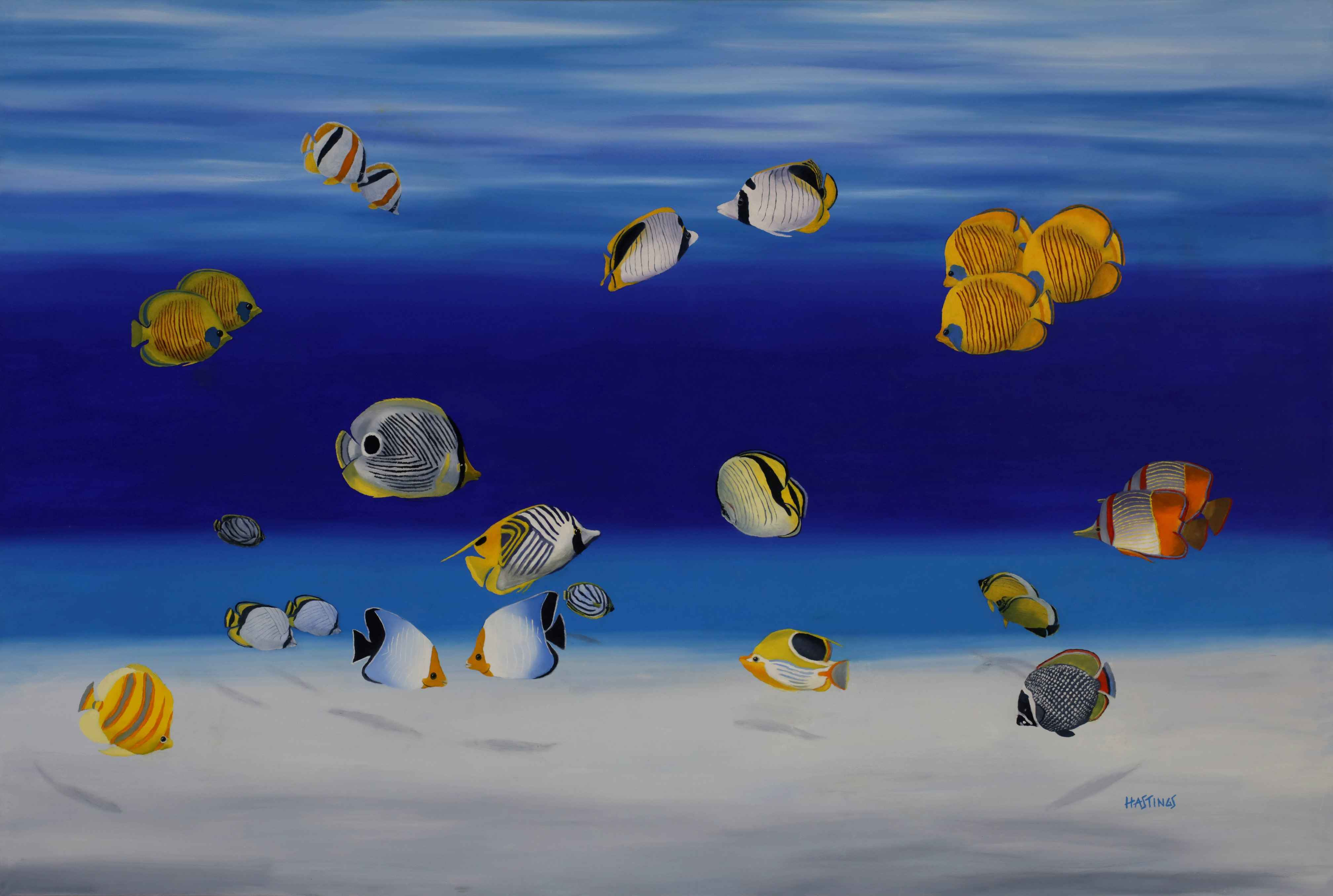 Butterfly Fishes by  Paul Hastings - Masterpiece Online