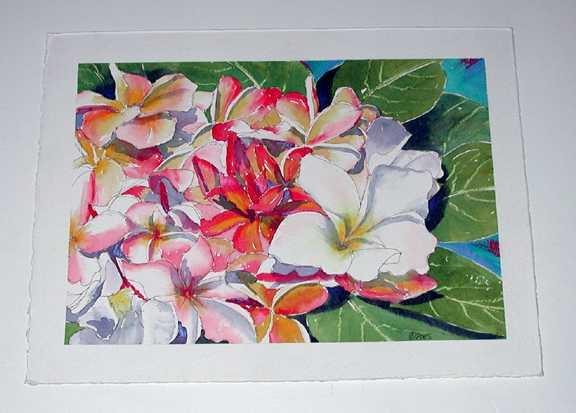 Plumeria Study #2 by  Nancy Poes - Masterpiece Online