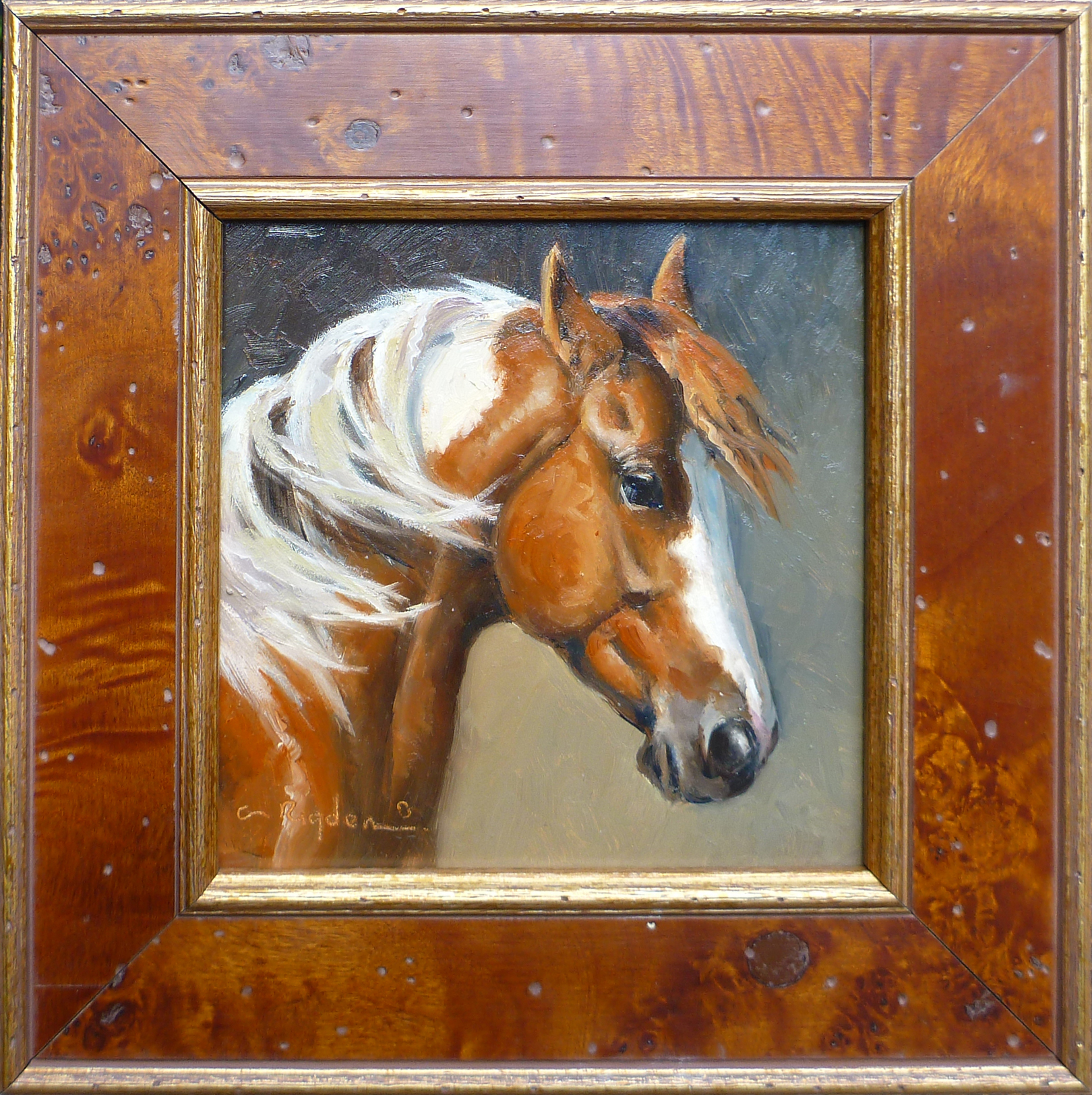 The Paint Mare by Ms. Cynthia Rigden - Masterpiece Online