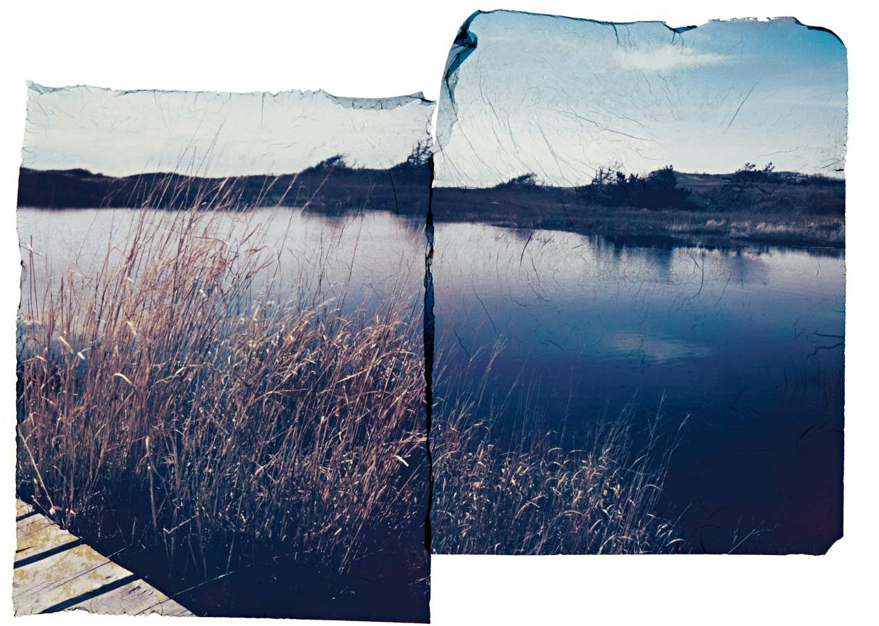 Aquinnah Duck Pond by  Jhenn Watts - Masterpiece Online