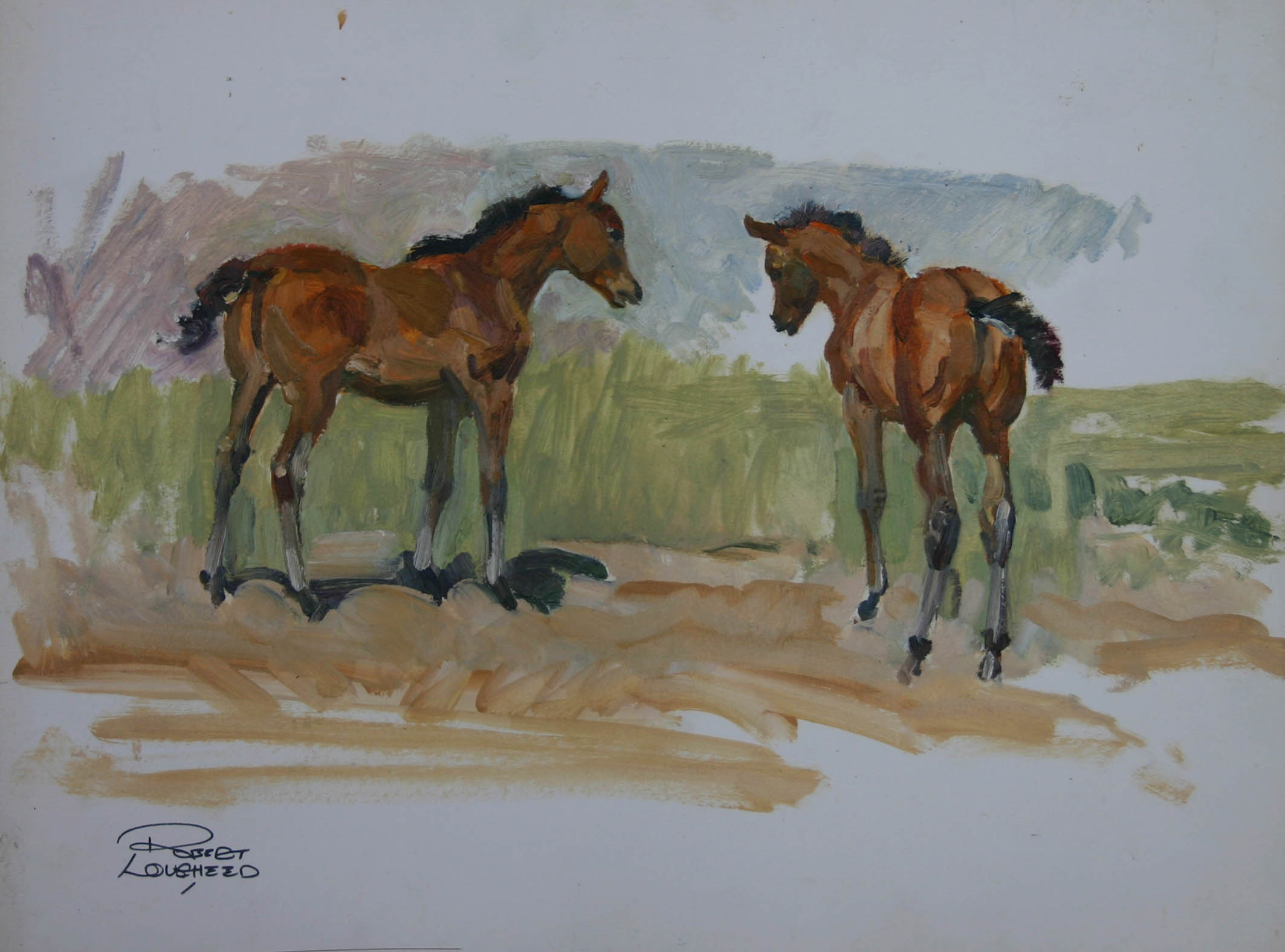 Two Young Colts by  Robert Lougheed - Masterpiece Online