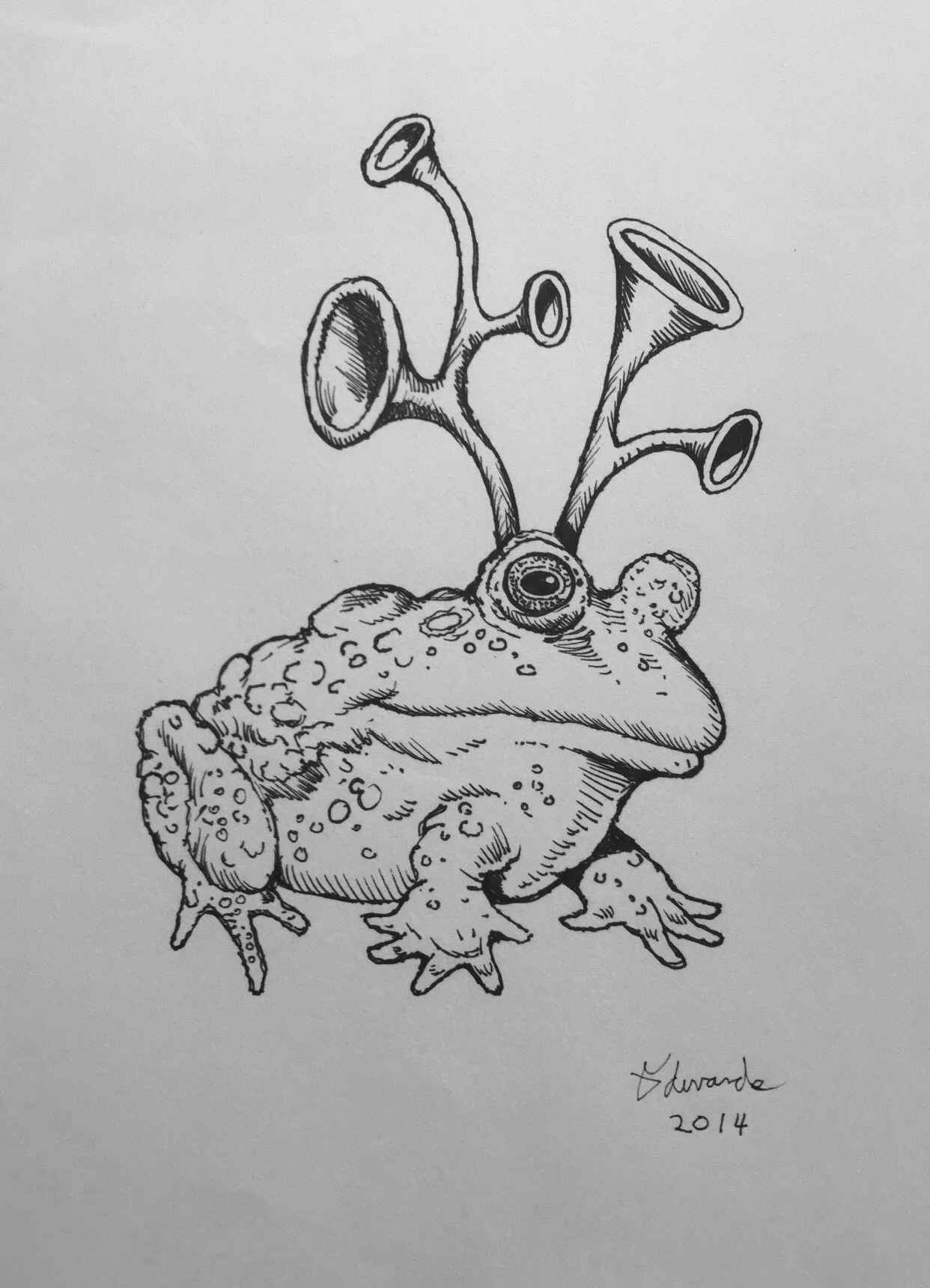 Horn Toad represented by  by  Wallace Edwards