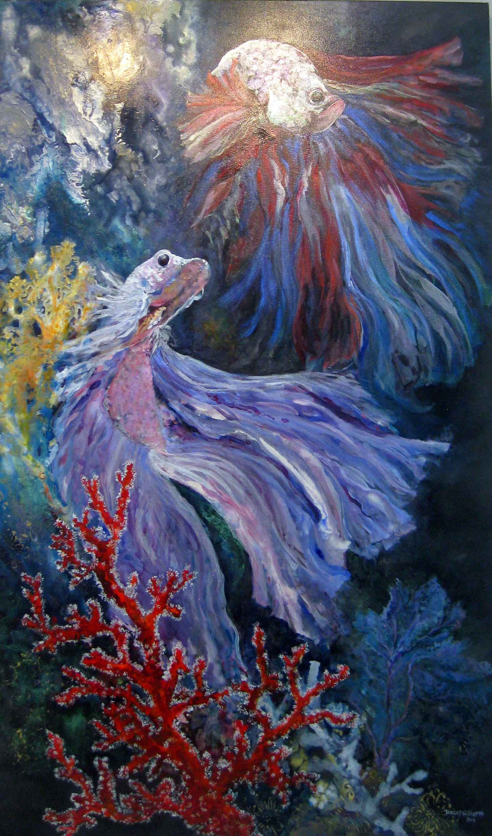 Siamese Fighting Fish... by Ms. Tracey Williams - Masterpiece Online