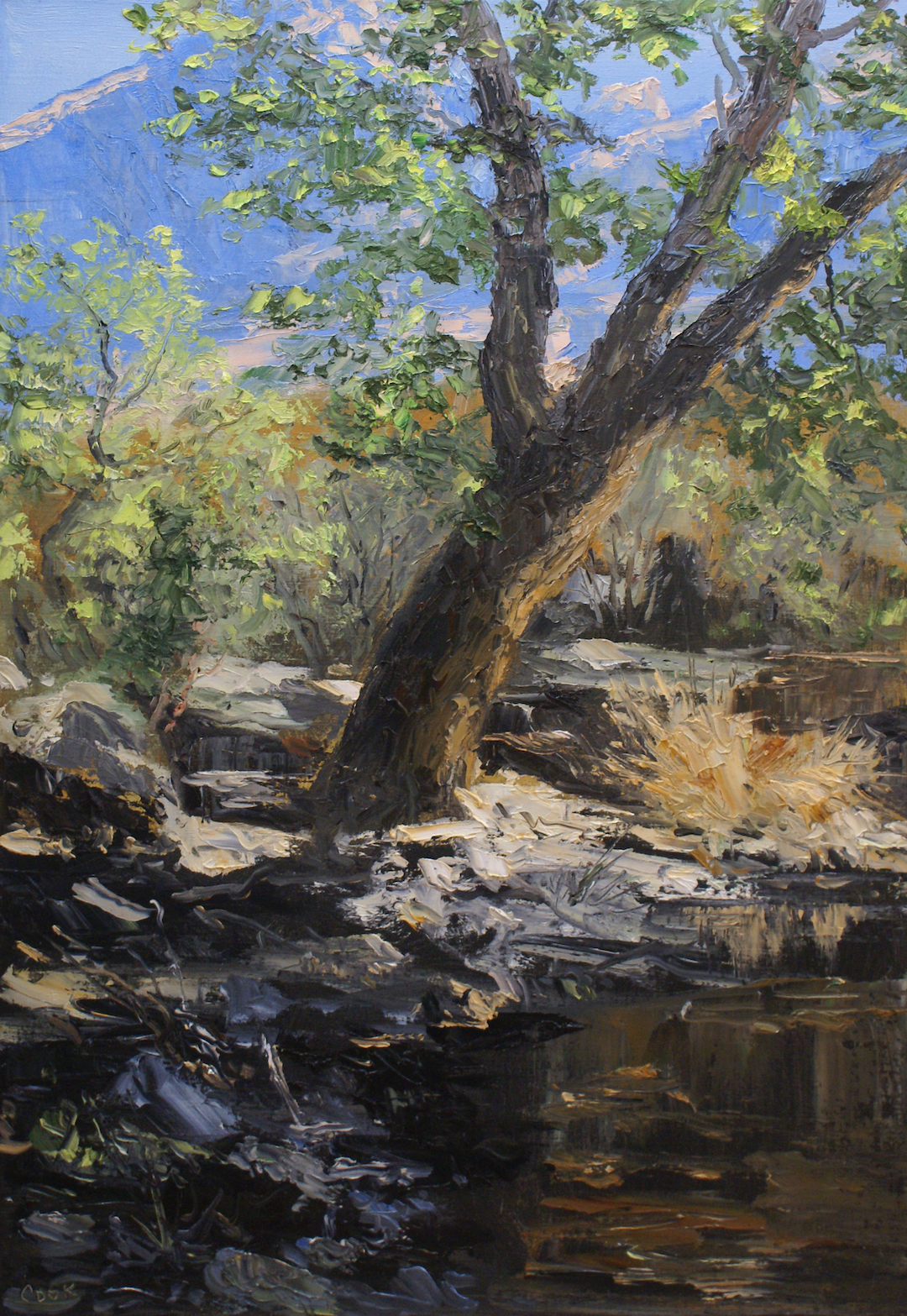 Sabino Creek Study #20 by  James Cook - Masterpiece Online