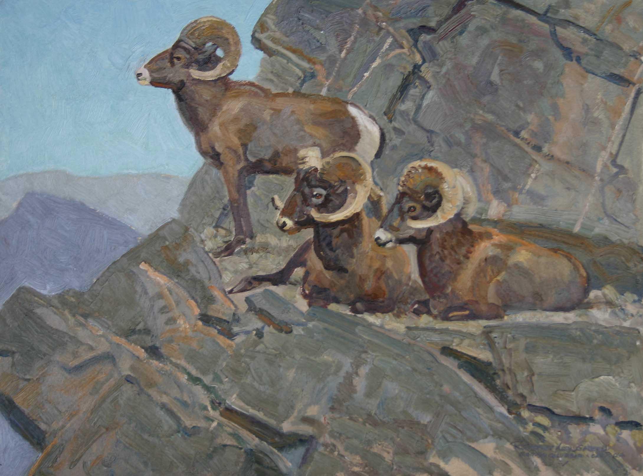Rocky Mountain Bighor... by  Robert Lougheed - Masterpiece Online