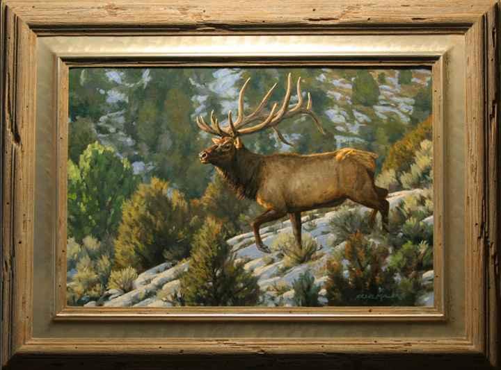 Brush Country Elk by  Bruce Miller - Masterpiece Online