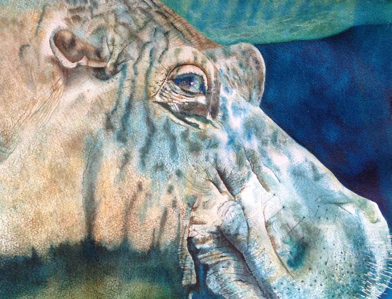 Hippo by  Sherry Matlack - Masterpiece Online