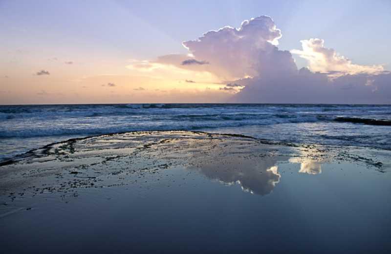 Dawn Reflections by  Shaun Alleyne - Masterpiece Online