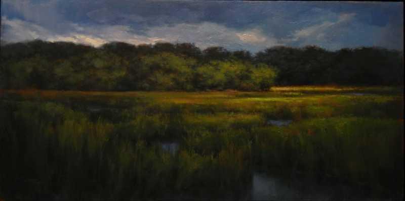 Stormy Marsh by  Darlou Gams - Masterpiece Online