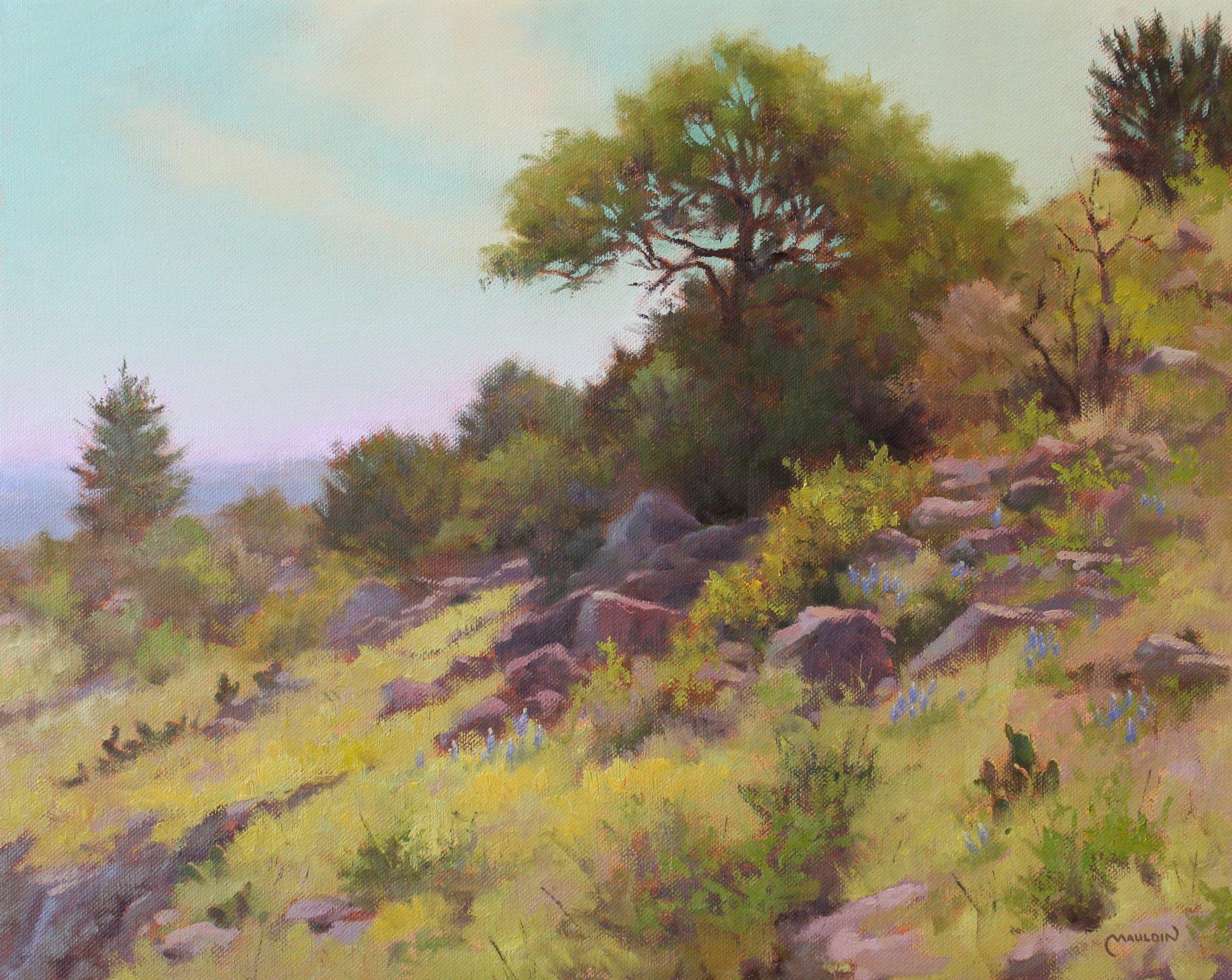 Hillside Habitat by  Chuck Mauldin - Masterpiece Online