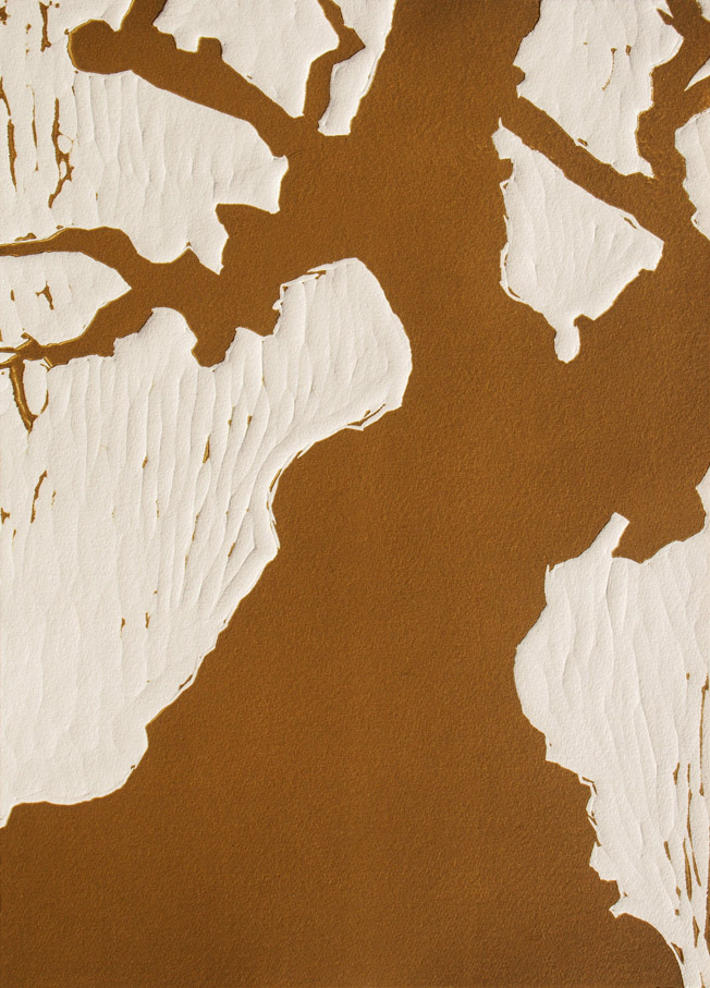 Ancient Olive  by  Angela Hayson - Masterpiece Online