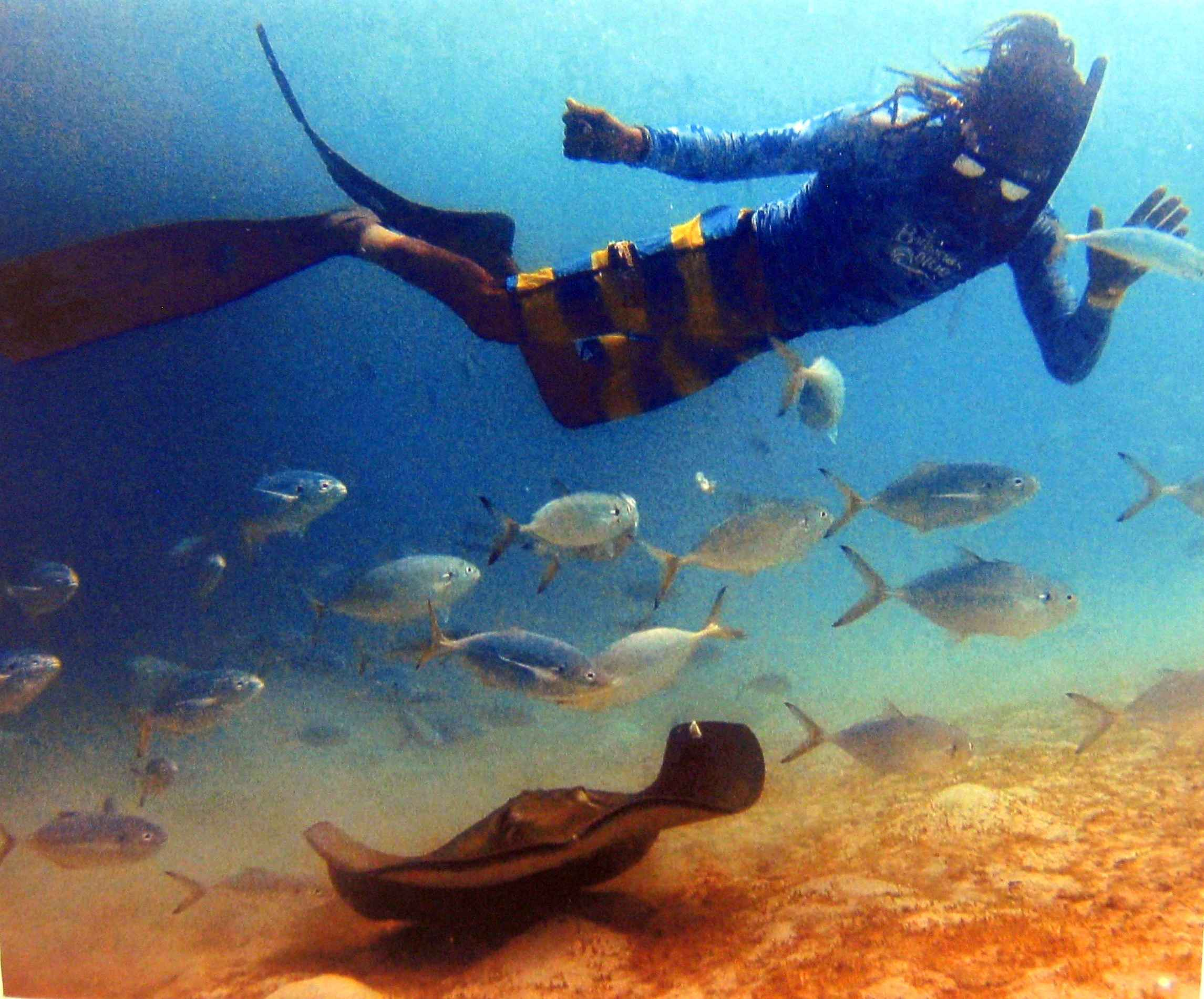 Diver 1 by Mr Andre Miller - Masterpiece Online
