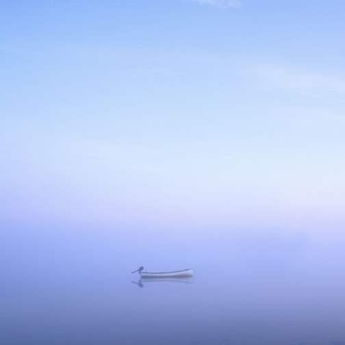 Tisbury Great Pond 20... by  Alison Shaw - Masterpiece Online