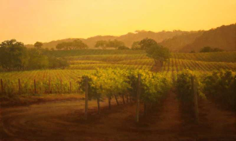 Late Light In The Vin...  by Ms Kathy O'Leary