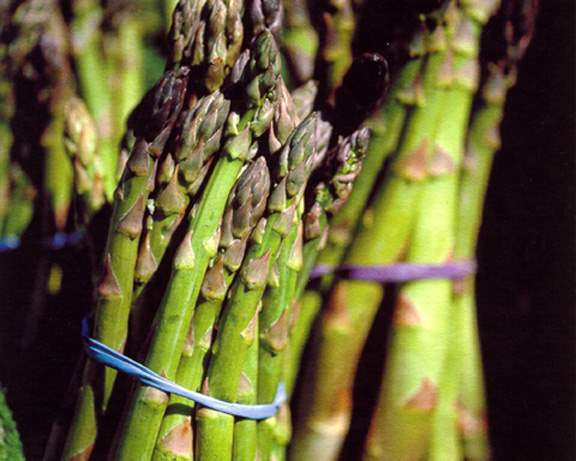 Asparagus, Farmers' M... by  Alison Shaw - Masterpiece Online